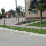 Obecný úrad Dobrohošť 016