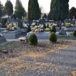 Cintorín Dobrohošť 006